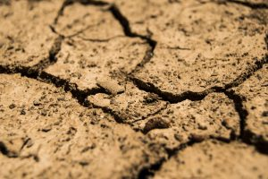 Cracked Earth by the drought 6K