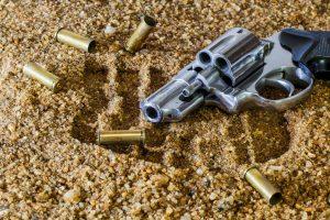 Taurus .357 Magnum Model 605 (Revolver)