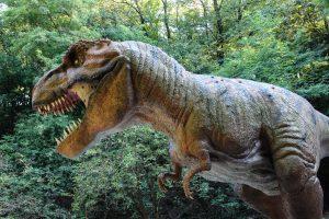 Tyrannosaurus rex 5K