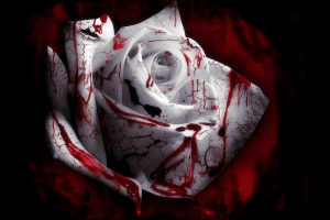 Bloody White Rose HD