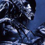AvP Xenomorph vs Predator