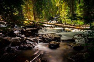 Forest River 6K