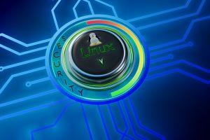 Linux Security Logo 4K