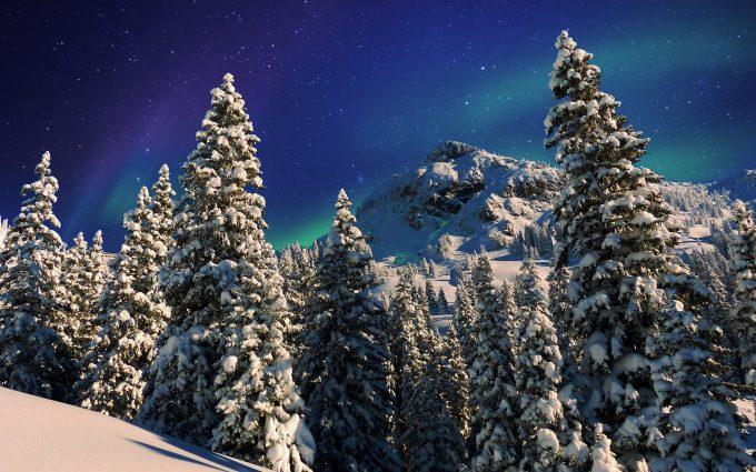 Snowy Forest Winter Milky Way HD