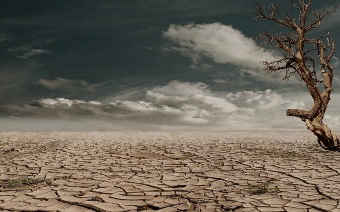 Cracked Earth In The Desert