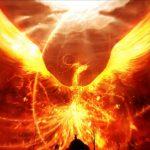 Majestic Phoenix