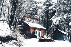 Snowy house in a forest