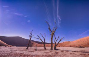 Desert Valley 6K