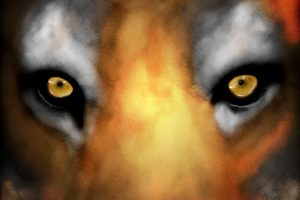 Tiger Face Digital Painting