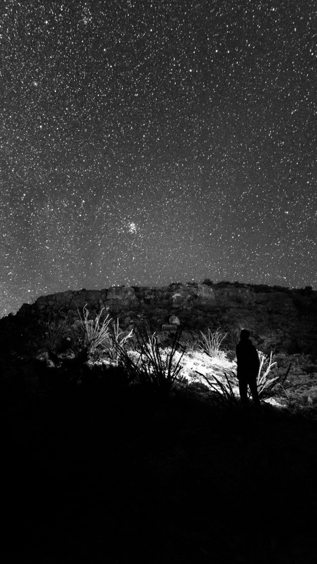Man Looking At The Starry Sky B Amp W Hd Wallpaper