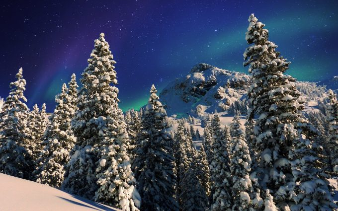 Snowy Forest Winter Milky Way HD